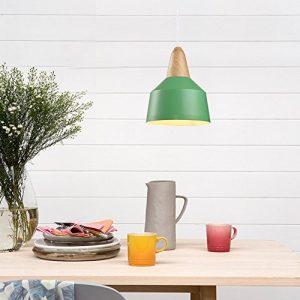 Nostralux Premium Modern Retro Sacndinavian Style Glass Ceiling Lamp Shade Industrial Pendant Light Featuring an E27 Pendant Lamp Holder 2016 NEW Edition 0 4